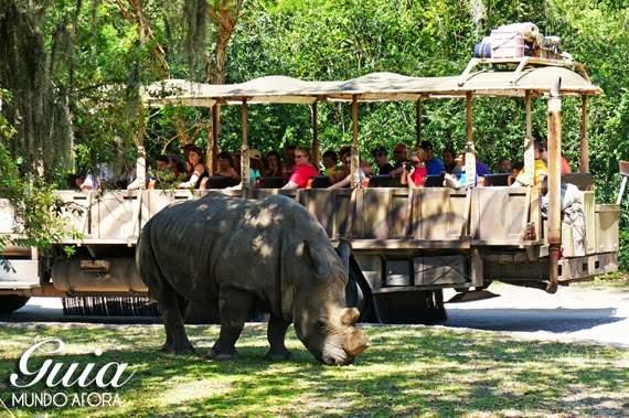 Kilimajaro Safari no Animal Kingdom