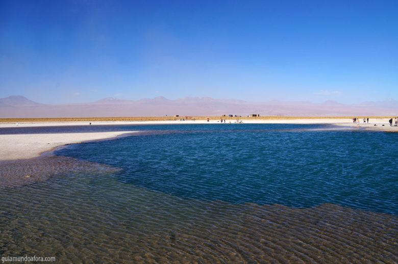 cejar-780x518 Laguna Cejar, no Atacama: a lagoa mais salgada que o mar morto
