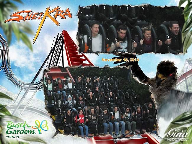 sheikra-pic-busch-gardens Busch Gardens Tampa: atrações, ingressos e dicas!
