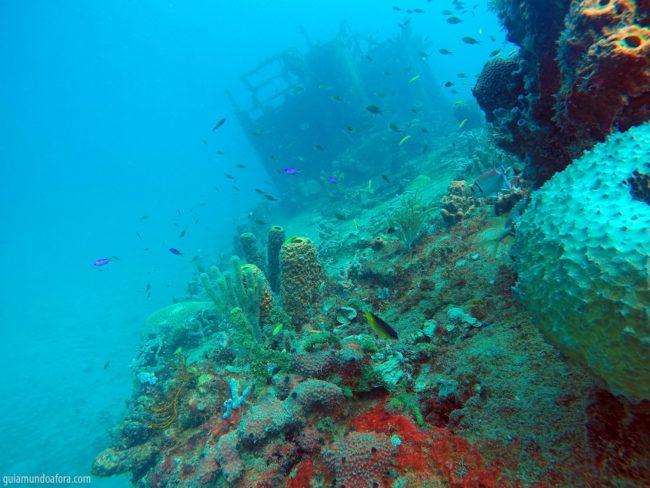 naufrágios em Barbados