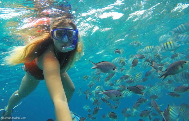 snorkel-barbados-min-650x417 Snorkel e mergulho em Barbados: fotos que vão te encantar