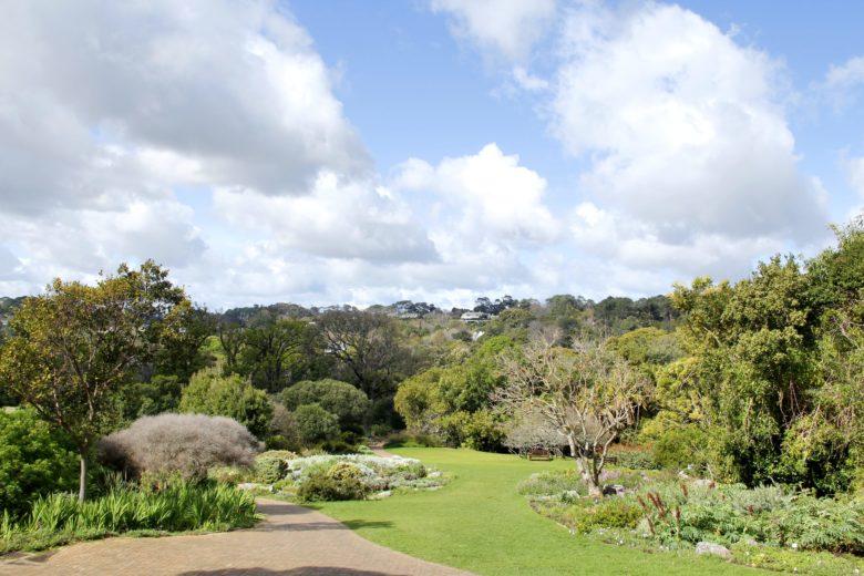 jardim botânico Kirstenbosch