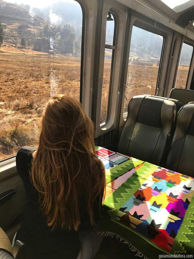 peru-rail-vistadome-min-650x867 Trem para Machu Picchu: como é o Vistadome da Peru Rail