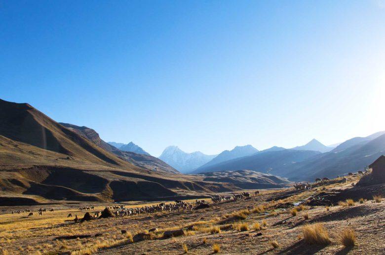 nascer-do-sol-780x518 Trilha Ausangate e Vinicunca (dia 2): o lodge mais alto do mundo