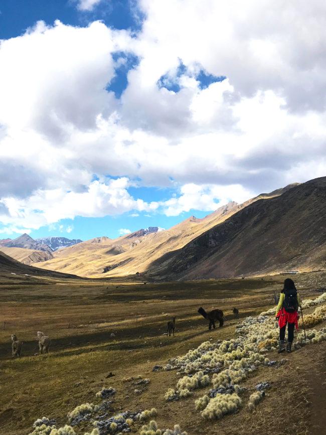 roupa-trilha-650x867 Trilha Ausangate e Vinicunca (dia 1): aclimatação no Peru