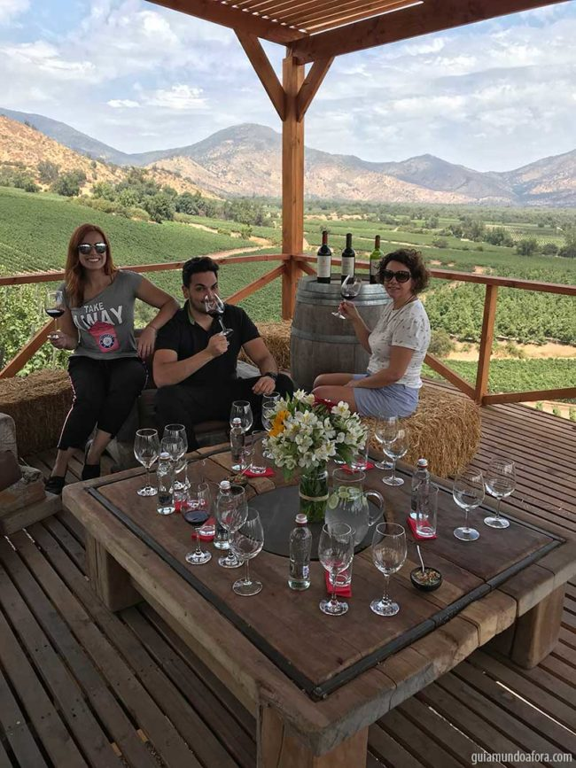 almoco-santiago-vinicola-min-650x867 Tour e almoço romântico na Vinícola El Principal em Santiago
