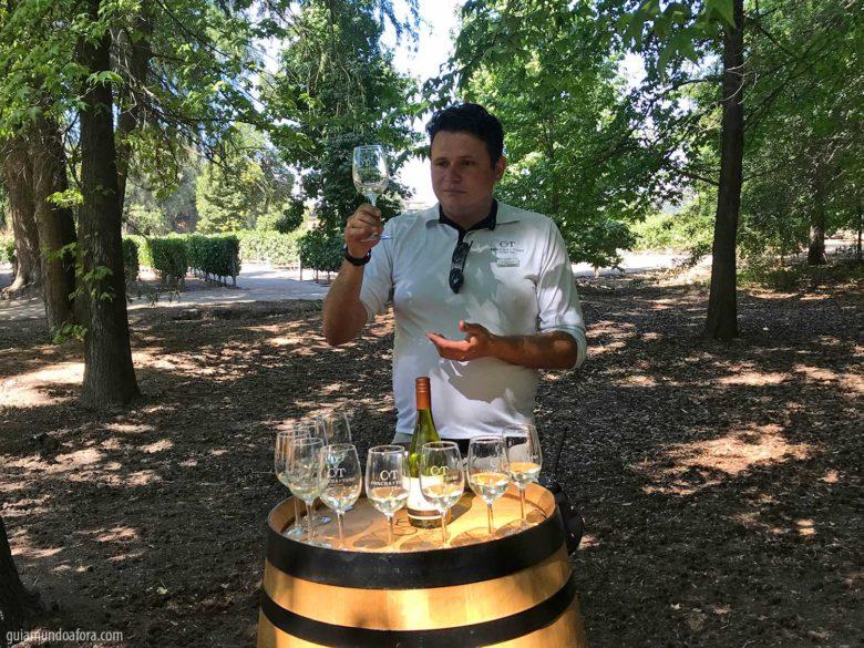 desgustacao-concha-toro-min-780x585 Top 3 vinícolas em Santiago para visitar por conta própria