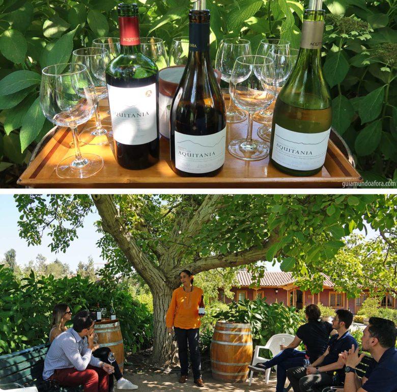 vinhos-aquitania-min-780x770 Top 3 vinícolas em Santiago para visitar por conta própria
