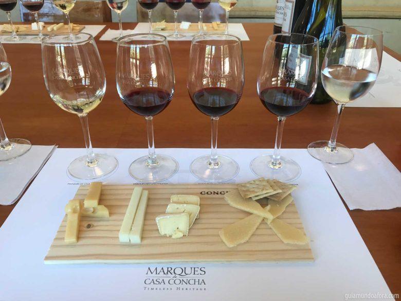 vinhos-conchaytoro-min-780x585 Top 3 vinícolas em Santiago para visitar por conta própria