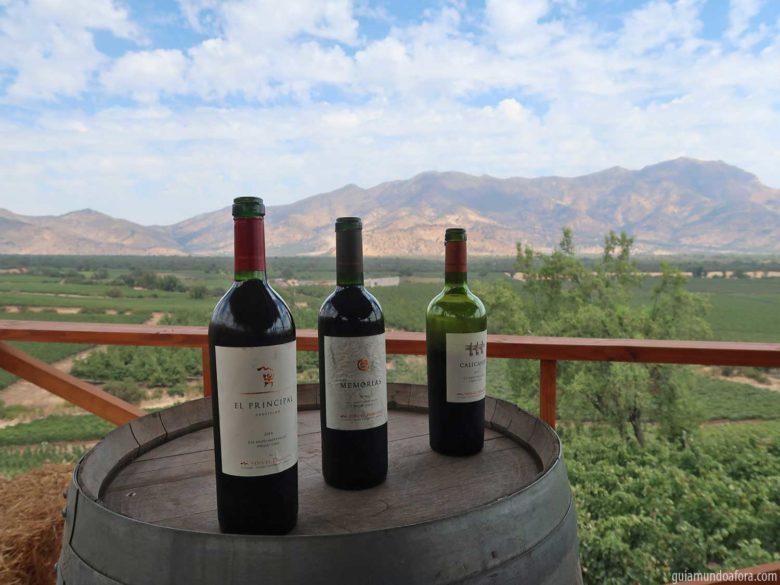 vinhos-el-principal-min-780x585 Tour e almoço romântico na Vinícola El Principal em Santiago
