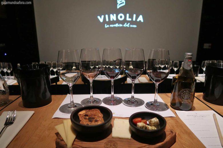 vionolia-min-780x520 Top 3 vinícolas em Santiago para visitar por conta própria