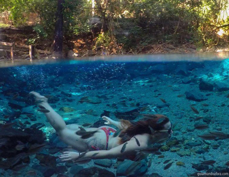 azuis-min-780x603 Descubra as Serras Gerais, o paraíso escondido do Tocantins